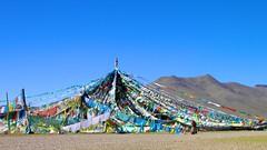2010-09-30 at 11-47-16 (nigel327) Tags: tibet 西藏 བོད དར་ལྕོག བོད་ལྗོངས བོད་ཡུལ 扎日南木错 阿里地区 མངའ་རིས་ས་གནས་ 札日南木错 zharinamco མངའ་རིས