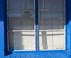 Window Blinds.12 (mcreedonmcvean) Tags: windows selfportrait reflection downtown wichitafalls urbandetail blueandwhitebuilding