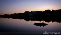 Parque do Lago - Guarapuava PR (Jean Henrique Wichinoski) Tags: nightphotography parque nature paran rio gua brasil fauna lago flora plantas arte canon20d natureza paz cu zen lugares campo click arvores paisagens aquarela guarapuava