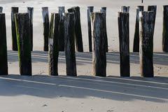 Poles & shadows I (Bernd H) Tags: holland netherlands nederland zeeland poles breakwater walcheren domburg tamronspaf1750mmf28xrdiiildasphericalif nikond80