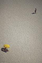 Far... (* Ahmad Kavousian *) Tags: beach portugal sand footprints far nazare explore318 explore474 exxplore280 exploe260