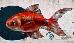 Rouge (Arcieri Saverio) Tags: rosso red murales street views nikon nikkor rouge art arte dipinto pesce fisch streetart