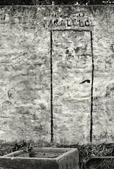 Door to a parallel universe (alejandro lifschitz) Tags: lifschitz black white blanco negro outdoor kodak trix 400 lightroom photoshop silver efex pro epson 850 monochrome border aires shadows sombras uruguay beach playa atardecer colonia arbol river rio de la plata winter invierno solitude nikon f4s door puerta science fiction wall pared