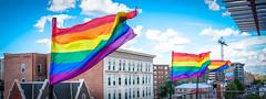 2017.07.02 Rainbow and US Flags Flying Washington, DC USA 6846