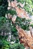 Alpinistas em Ronda (Vera Schuck Paim) Tags: cidade no abismo abyss rural penhascos montanhas mountain verde green flores silvestres varias em varanda castelo castle praça de touros garden jardim artesão mirante miradouro ponte bridge building moradia pedras antiguidade antiquity alpinista square hotel door porta
