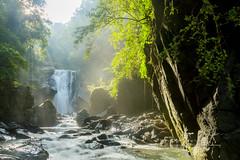 絕景內洞 (湯小米) Tags: canon 1dx ef1635mmf28l fall forest river rock taiwan 內洞 內洞森林遊樂區 瀑布