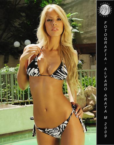 Zebra Bikini at Women sexy