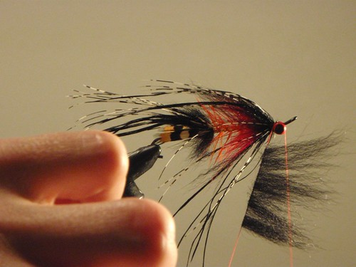 Tying intruder style flies