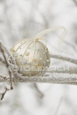 christmas-bauble-frost-covered_~967464