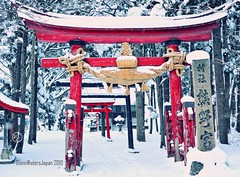 Japan images.  Glenn Waters.  Happy New Year's Day 2010. Over 22,000 visits to this photo. (Glenn Waters in Japan.) Tags: winter snow cold japan nikon shrine newyear aomori  hirosaki    jinja newyearsday happynewyear 2010  january1st     hiraka d700 nikond700 112010  glennwaters nikkorafs50mmf14g