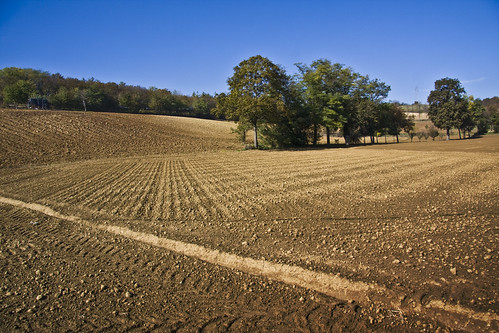 Plowed Fields #3