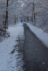 WinterOisterwijk2010-55 (Joris Leermakers) Tags: winter sneeuw oisterwijk januari2010