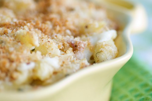 Italian mac n' cheese with pancetta