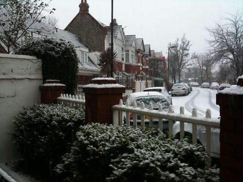 January snow 2010 1