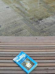 a great book and a puddle (Todd Gundersomething) Tags: rain oregon portland book literature author vonnegut tingaling kurtvonnegut godblessyoumrrosewater mrrosewater