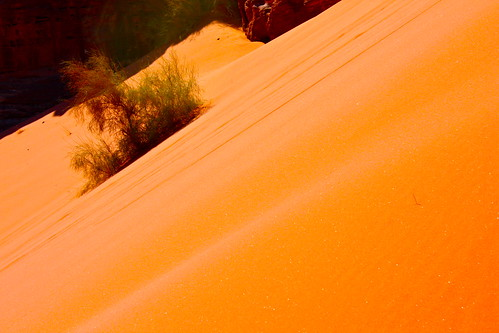Jordan - Wadi Rum - 042