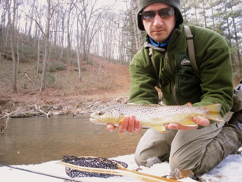15 Inch Gunpowder Brown Trout