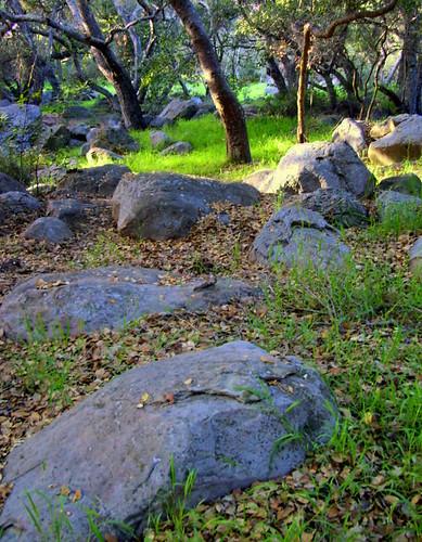 Rocky Nook Sandstone Boulders