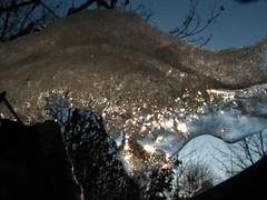 Ice on the branch (paprtala) Tags: macro ice ast led eis zima hielo yelo iceonthebranch lednavětvích eisaufdemast