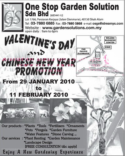 29 Jan - 11 Feb: Valentines Day and CNY Promotion