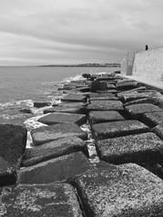 PC271498 (Palmerr) Tags: sea italy mare porto e1 monopoli flickraward bestofmywinners