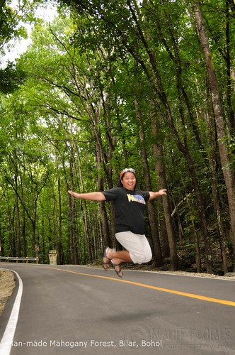 Jumpshot at Bilar Man-made Mahogany Forest