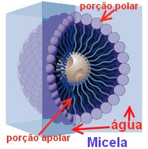 micela