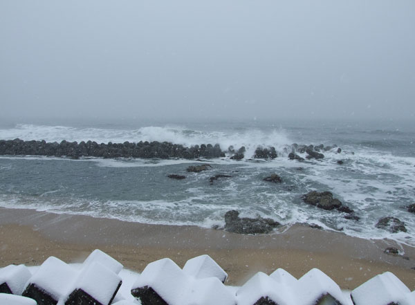 The sea and snow