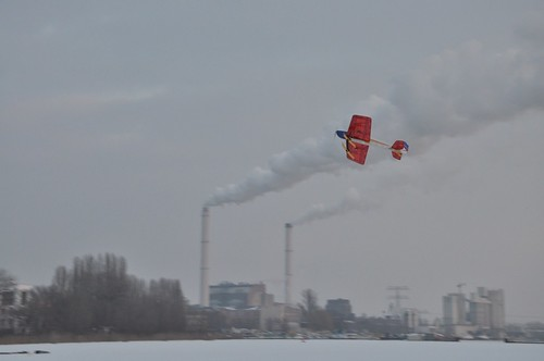 Fliegen auf der Bucht