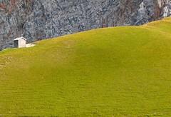 Alpiner Kontrast (schulz.steffen) Tags: alps verde green contrast landscape austria sterreich rocks wiese grn alpen landschaft kontrast alpi felsen wetterstein kontraste almhtte alpinekontraste alpinecontrast