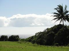DSC00325 (JFCToronto) Tags: hawaii kapalua sbschampionship