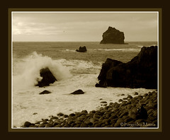 close to power - the photographer (thorgerdur mattia) Tags: winter sepia coast rocks photographer power shore february powerful reykjanes febrar orgerur powerfulwaves thorgerdurmattia orgerurmatta photograpershooting thorgerdur