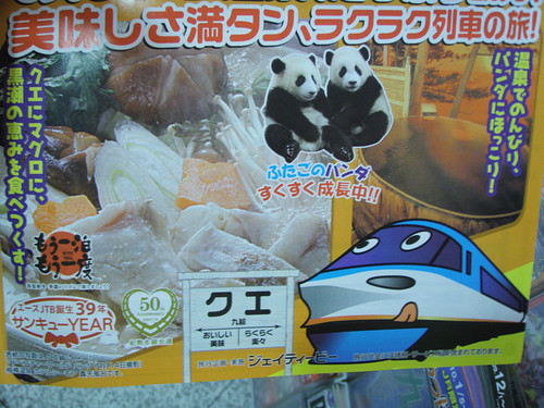 weird_train_panda