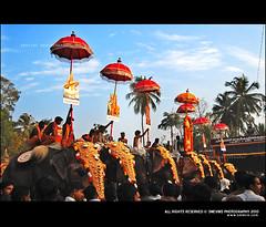 Pariyanampetta Pooram (Smevin Paul - Thrisookaran !! www.smevin.com) Tags: