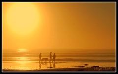 Blazing Sunset (Sonja Mller) Tags: ocean sunset sea orange dog sun beach silhouette fog strand gold golden see sand waves capetown blaze oranje goud kaapstad branders walkingonthebeach melkbosstrand sonsondergang sononder oseaan sonskyn lifeattheocean