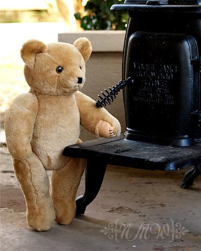 Teddy stove