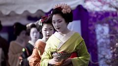 Baika-sai '10 #9 (Onihide) Tags: kyoto maiko geiko teaceremony kitanotenmangu baikasai kamishichiken ichiteru  onihide