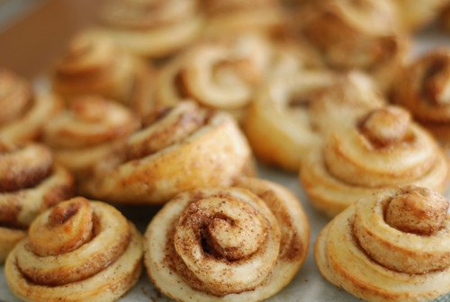 kaneelisaiad/cinnamon rolls