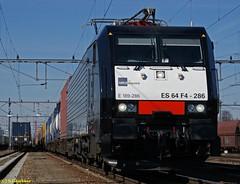 E189 286-8 in Venlo (CargoFighter2) Tags: br venlo neuss 189 ers br189 kijfhoek es64f4 oberhausenwest rotterdamwaalhaven melzoshuttle 1892868 es64f4286 europeanrailwaysservice