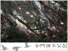 蟹眼泉-01