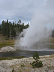 I was hoping to catch a bit of a rainbow.  There was a faint rainbow, but nothing very satisfying.  Riverside Geyser.