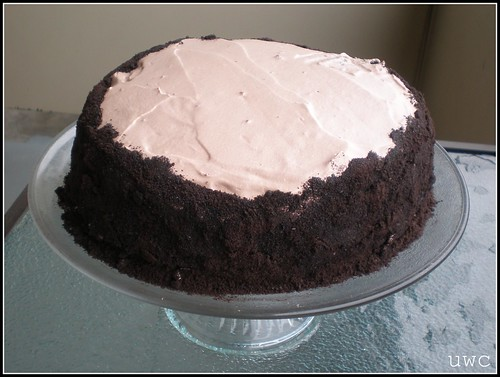 Ovarian Chocolate Cake