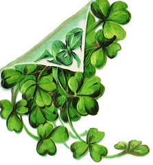 Happy St. Patrick's Day - Slinte! (MarsW) Tags: ireland irish green guinness celebrations cheers stpatrick stpatricksday patronsaint slainte luckoftheirish 17march