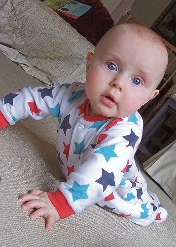 crawler - 7 months
