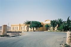パルミュラ(シリア)