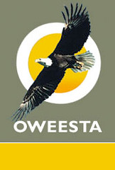 Oweesta logo
