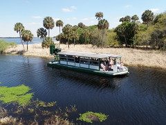 Airboat approaching boat basin