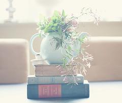teapot1 (左八) Tags: blossombranch blossombranchbymaggieharkovphotographyllc
