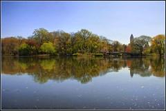 desayuno con vistas (Álex H.González) Tags: blue lake water lago agua flickr arboles centralpark manhattan reflejo nuevayork