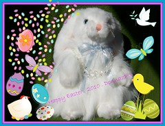Princess Bunny... (DonnazMagicalPix) Tags: bunny bunnies easter fun crystals sensational easterbunny smrgsbord easterrabbit diamondclassphotographer flickrdiamond thesuperbmasterpiece